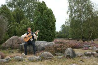 Heidegitarre_03