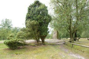 Heide_Spaziergang_Loensdenkmal_019