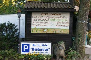 Heide_Spaziergang_Undeloh_069