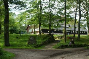 Heide_Spaziergang_Wilsede_Naturpark_014