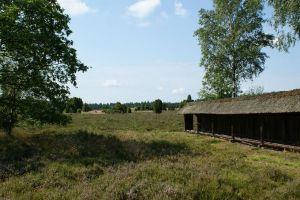 Heide_Spaziergang_Wilsede_Naturpark_025