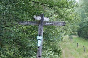 Heide_Spaziergang_Wilsede_Naturpark_033