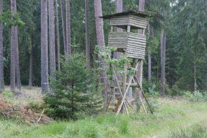 Heide_Spaziergang_Wilsede_Naturpark_035