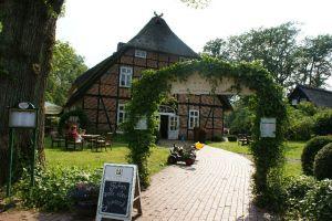 Heide_Spaziergang_Wilsede_Naturpark_041