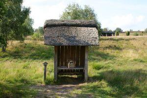 Heide_Spaziergang_Wilsede_Naturpark_046