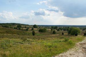 Heide_Spaziergang_Wilsede_Naturpark_047