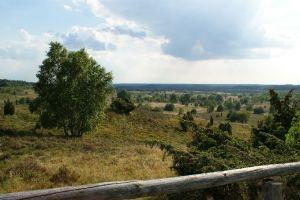 Heide_Spaziergang_Wilsede_Naturpark_048