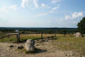 Heide_Spaziergang_Wilsede_Naturpark_049