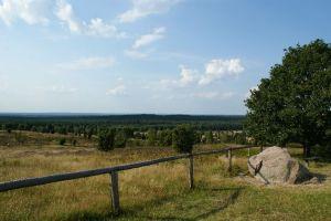 Heide_Spaziergang_Wilsede_Naturpark_050