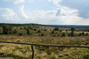 Heide_Spaziergang_Wilsede_Naturpark_052