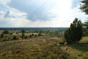 Heide_Spaziergang_Wilsede_Naturpark_053