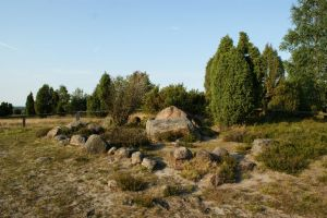 Heide_Spaziergang_Wilsede_Naturpark_059