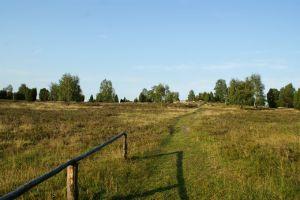 Heide_Spaziergang_Wilsede_Naturpark_062